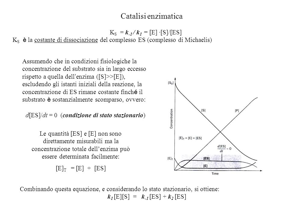 Catalisi enzimatica KS = k-1 / k1 = [E] ·[S]/[ES]
